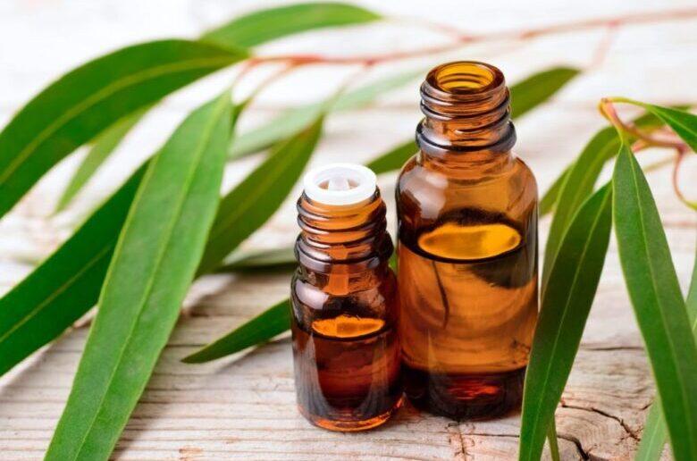 Эфирное масло эвкалипта для похудения и целлюлита