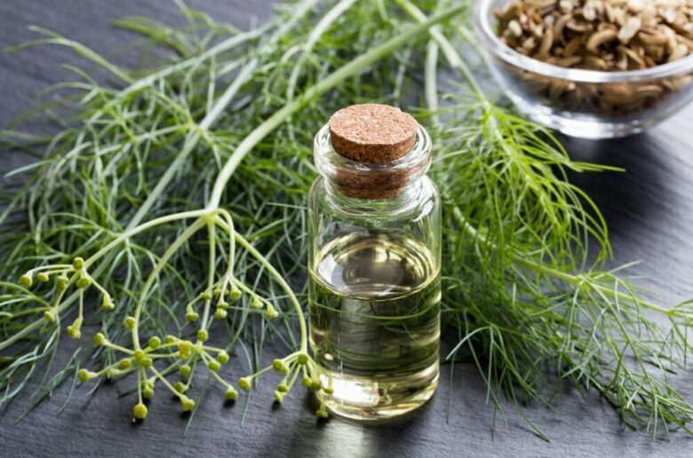 Эфирное масло фенхеля для похудения и целлюлита