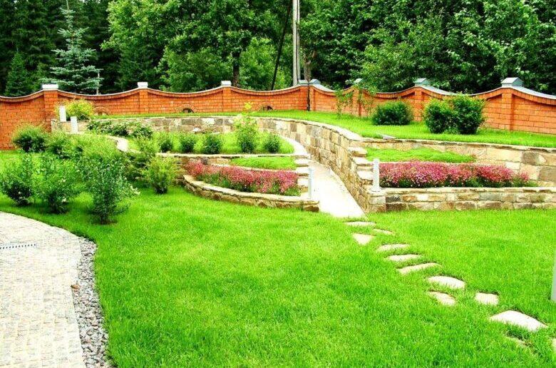 как посадить газон в частном доме своими руками