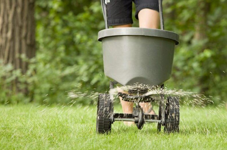 Подкормка и полив газона