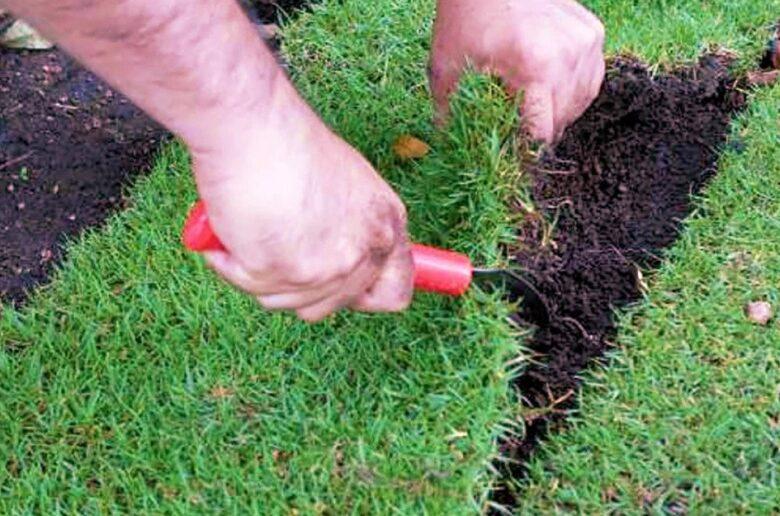 Отделение полоски дерна при реставрации газона