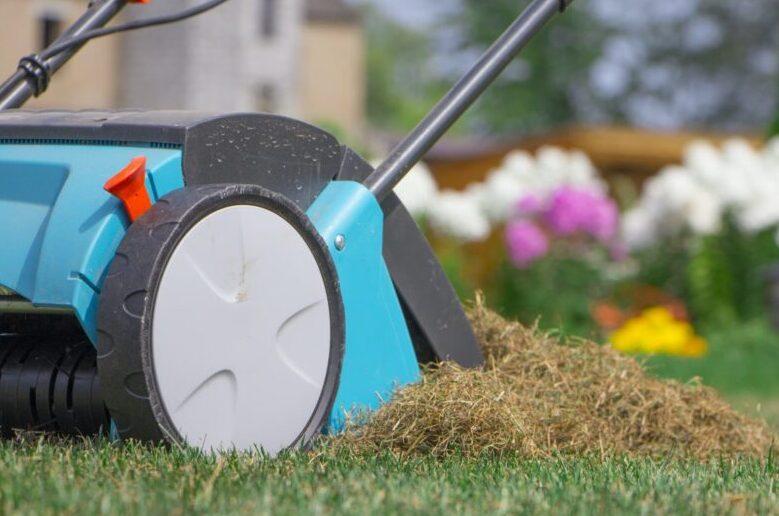 Советы по скарификации и вычесыванию газона