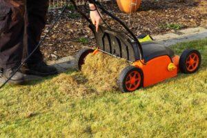 Вычесывание и скарификация газона
